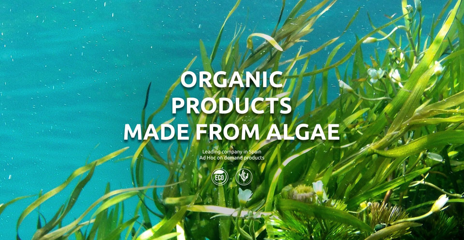 Organic products algae