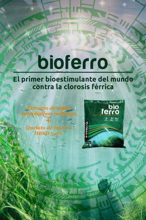 bioferro bionutriente