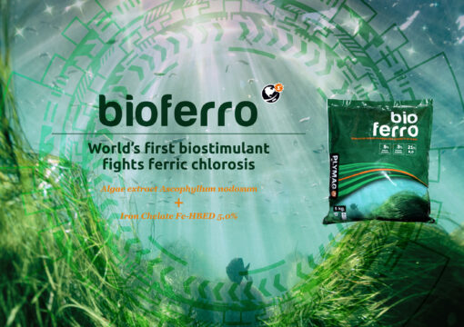 Bioferro, the latest innovation from Plymag
